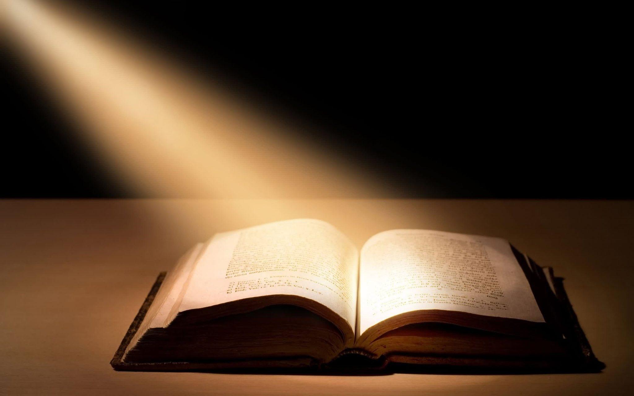 BIBLIA SFANTA SCRIPTURA ESTE CUVANTUL VIETII